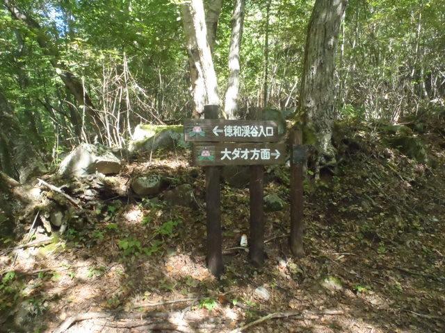 徳和~大ダオ~黒金山~西沢渓谷H23.10.10 031