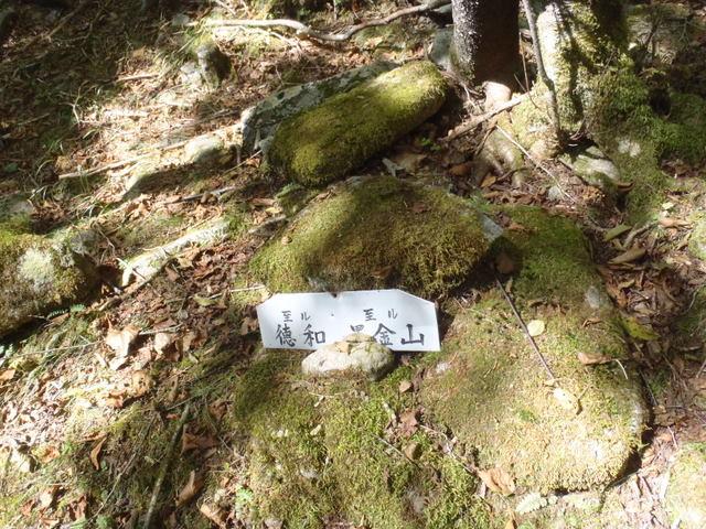 徳和~大ダオ~黒金山~西沢渓谷H23.10.10 071