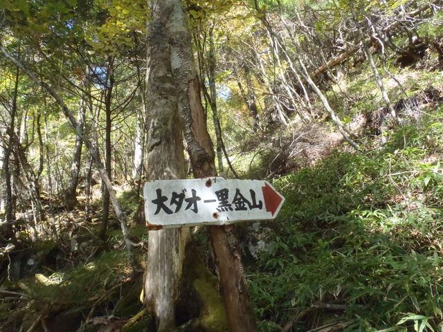徳和~大ダオ~黒金山~西沢渓谷H23.10.10 082