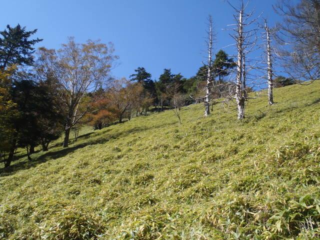 徳和~大ダオ~黒金山~西沢渓谷H23.10.10 091