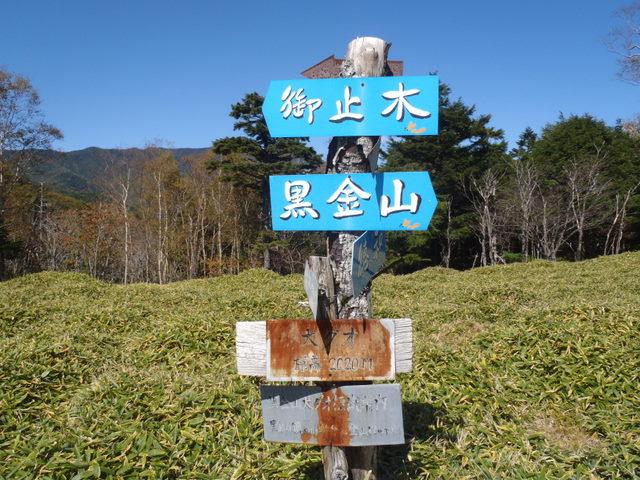 徳和~大ダオ~黒金山~西沢渓谷H23.10.10 094