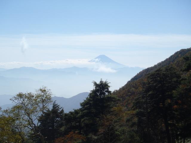 徳和~大ダオ~黒金山~西沢渓谷H23.10.10 093