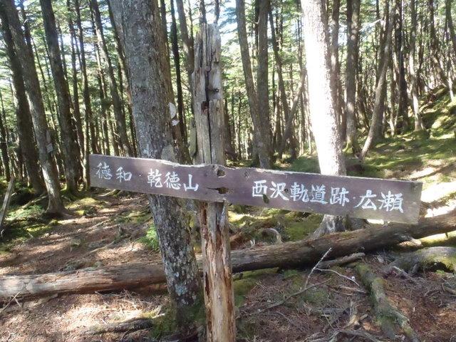 徳和~大ダオ~黒金山~西沢渓谷H23.10.10 121