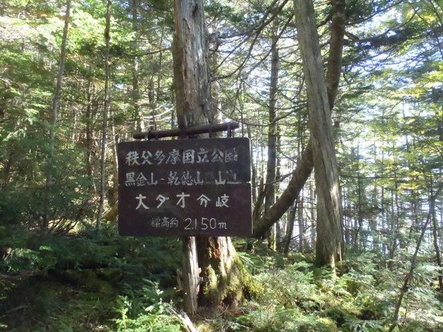 徳和~大ダオ~黒金山~西沢渓谷H23.10.10 120