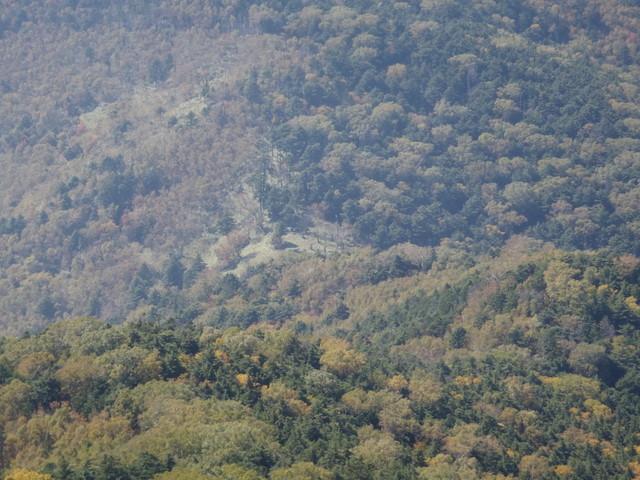 徳和~大ダオ~黒金山~西沢渓谷H23.10.10 138