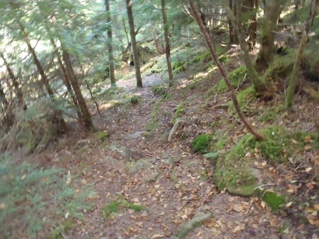 徳和~大ダオ~黒金山~西沢渓谷H23.10.10 143