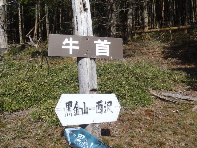 徳和~大ダオ~黒金山~西沢渓谷H23.10.10 149