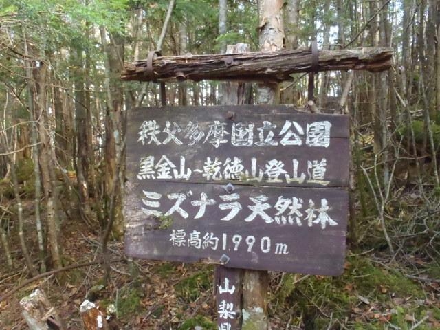 徳和~大ダオ~黒金山~西沢渓谷H23.10.10 156