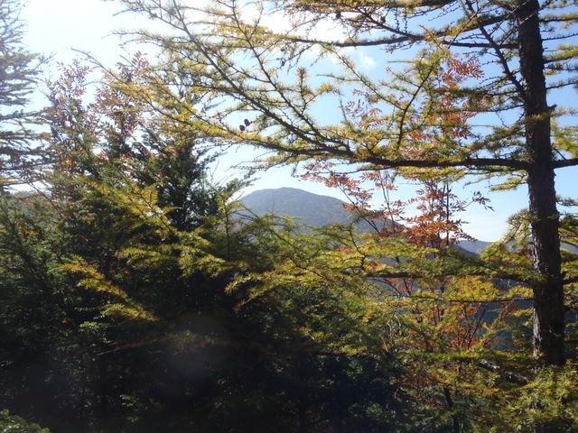 徳和~大ダオ~黒金山~西沢渓谷H23.10.10 153