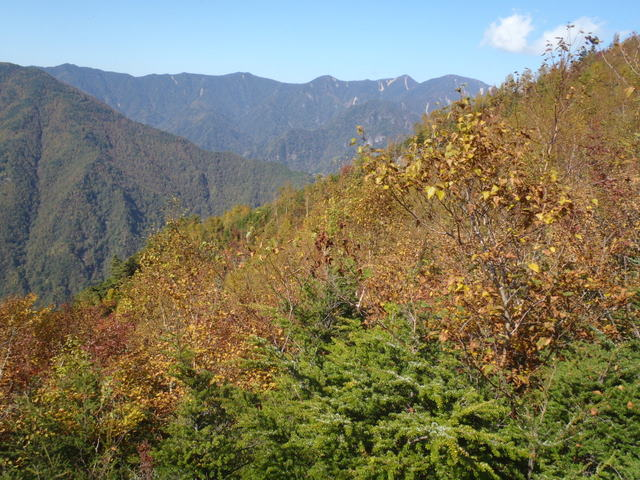 徳和~大ダオ~黒金山~西沢渓谷H23.10.10 163