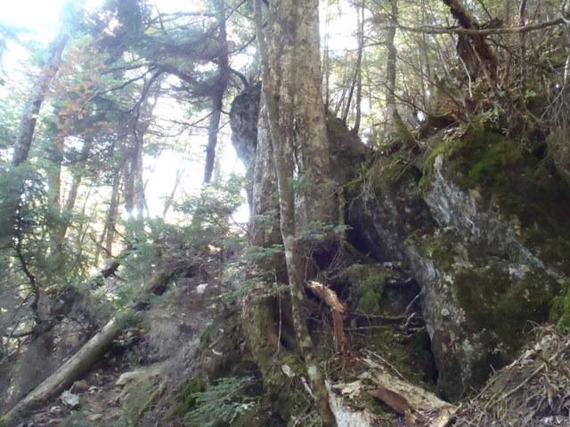徳和~大ダオ~黒金山~西沢渓谷H23.10.10 168