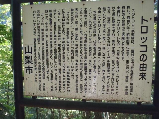 徳和~大ダオ~黒金山~西沢渓谷H23.10.10 188