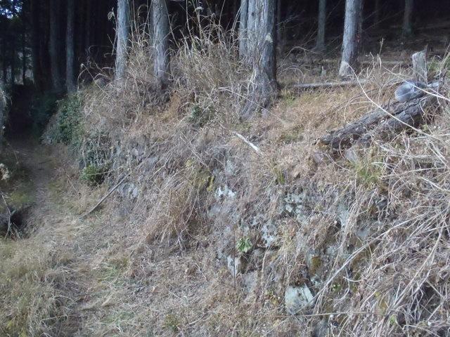 奥多摩ー丹波~サヲラ峠~飛龍山H23.12.30 182