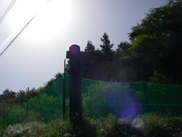 IMGP3160.jpg