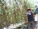 川村農園イベント3