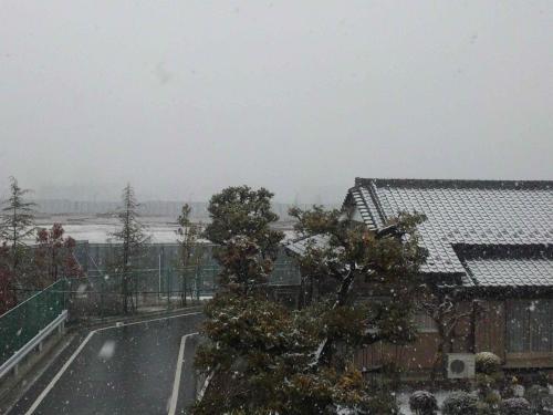 コピー ~ 2011.02.11.雪景色
