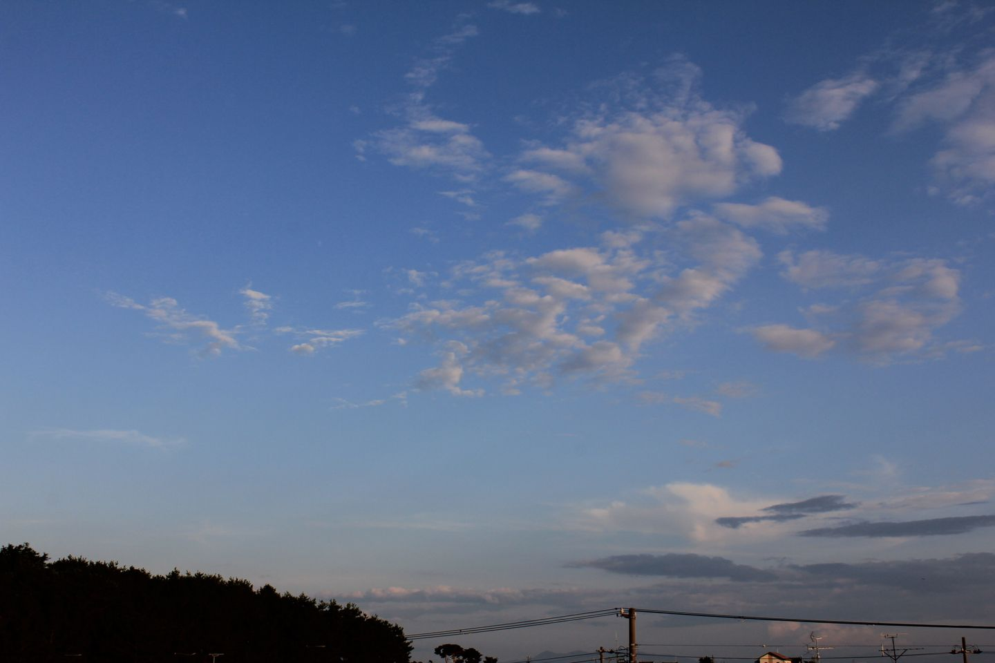 """60D11""""8月4日D_07●S"""