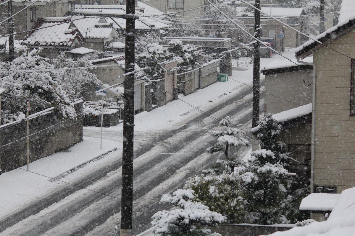 11D12月16日2雪_06●S