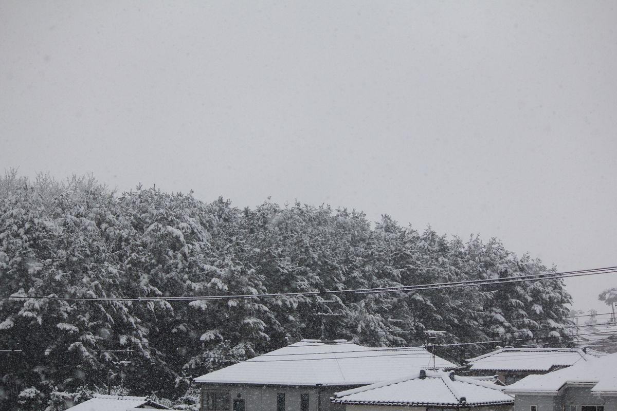 11D12月16日2●S雪_07