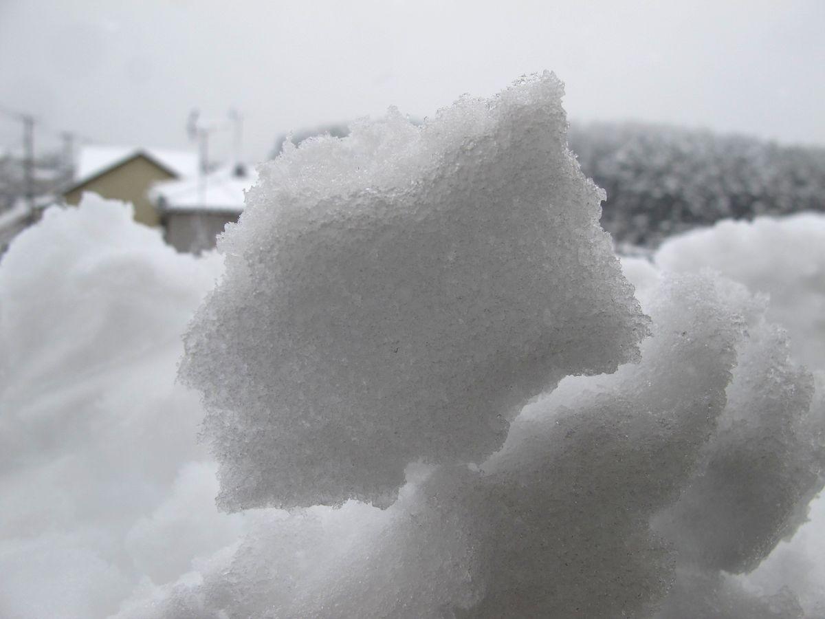 11G12月16日2回目●雪C_02整