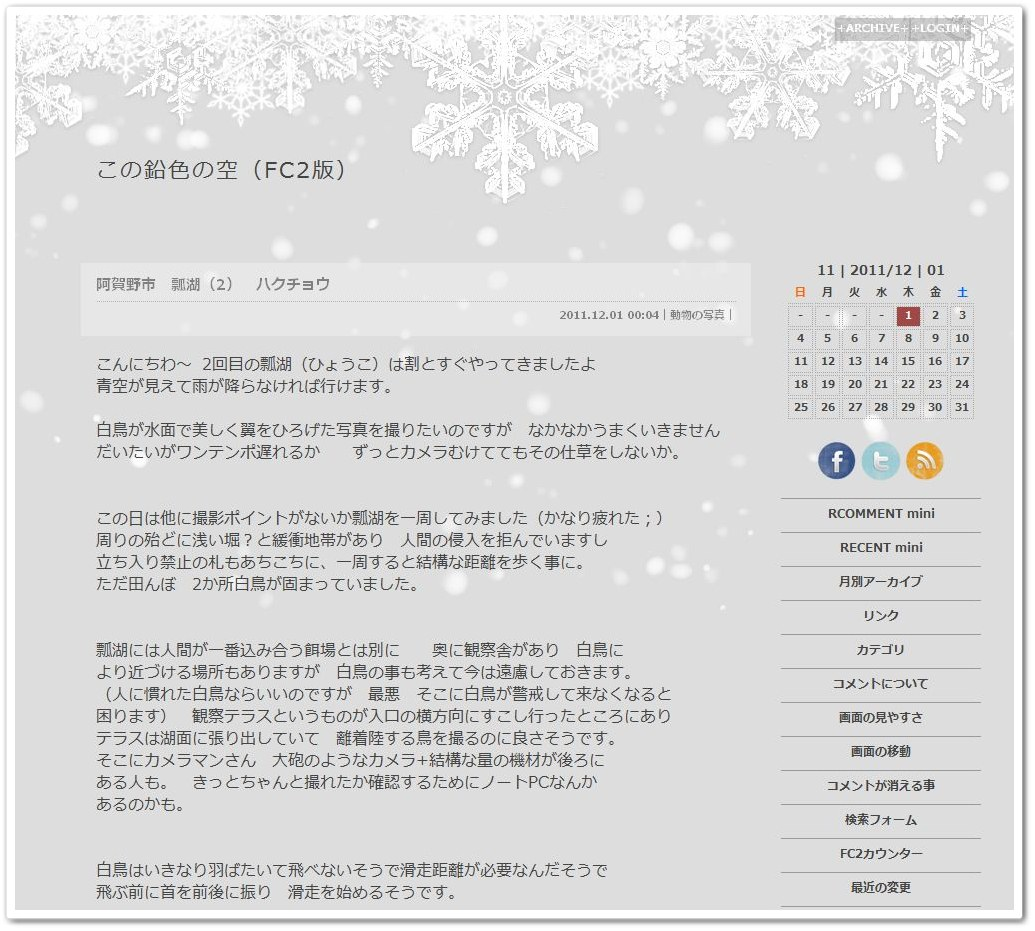 31_snowflakeシャドウボーダー01