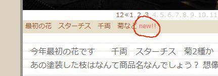 ブラウンカラーれん記事NEWA