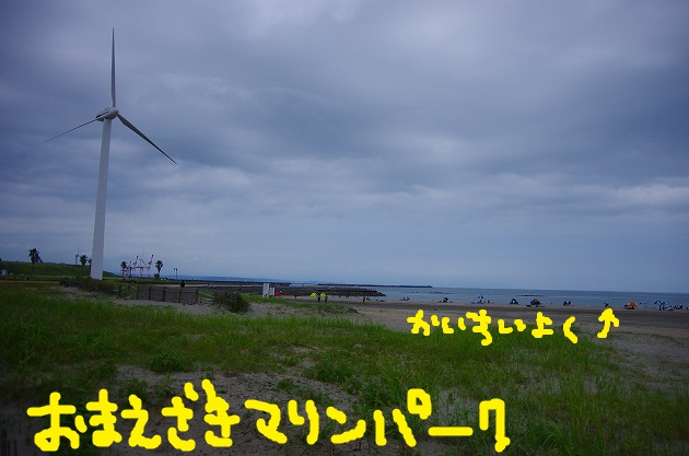 IMGP5768.jpg