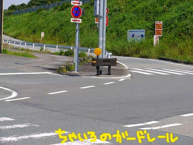 P1360473.jpg