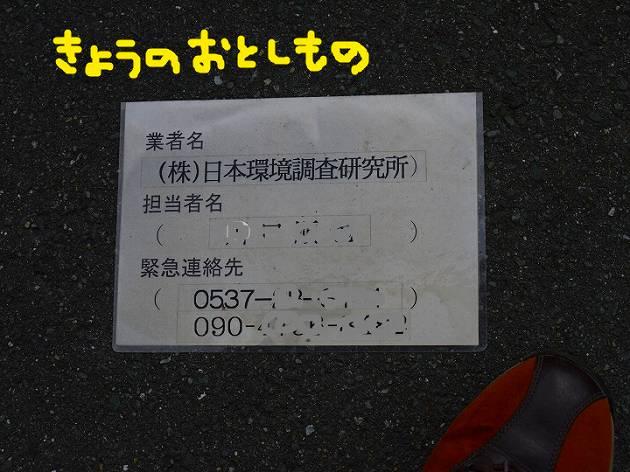 P1360526.jpg