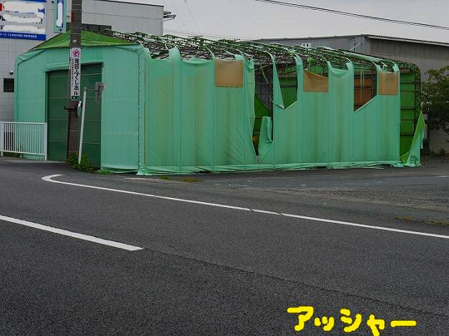 P1360676.jpg