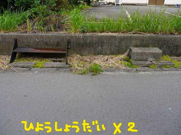 P1370327.jpg