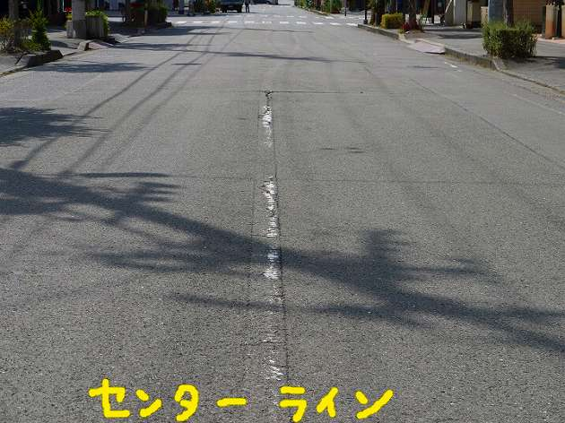 P1380075.jpg