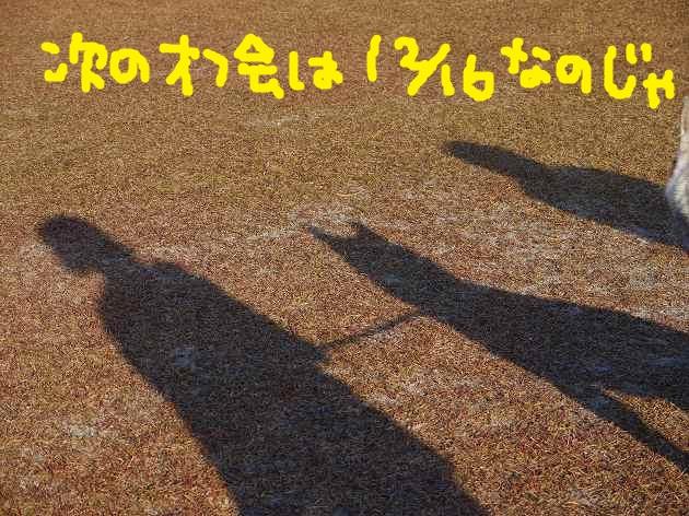 P1410271.jpg