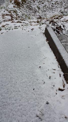 雪模様20131212_081648