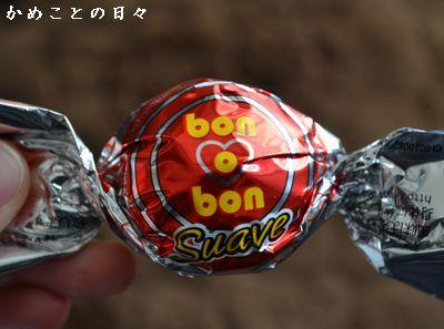 DSC_0109-bono.jpg
