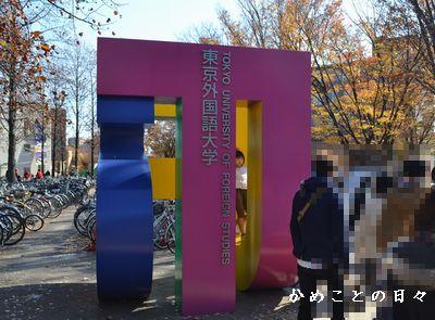 DSC_0204-gai.jpg
