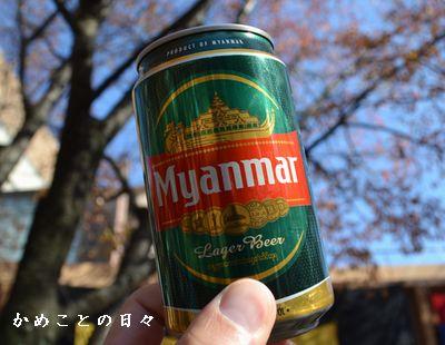 DSC_0228-mya.jpg