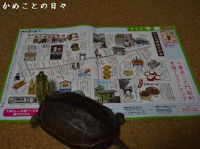 DSC_0537-map.jpg