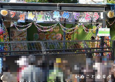 DSC_0966-tu.jpg