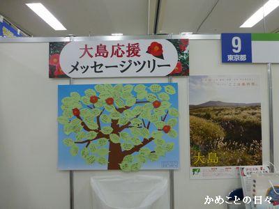 P1080435-tree.jpg