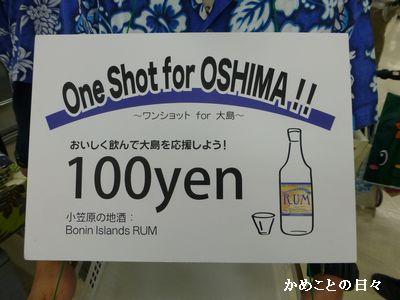 P1080461-oneshot.jpg