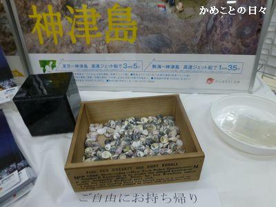 P1080503-kai.jpg