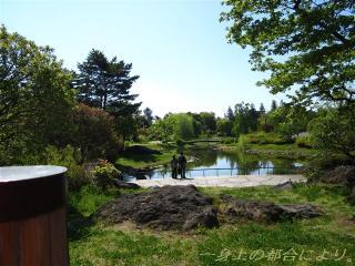 こもれびの池