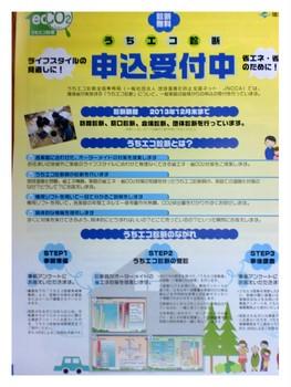 2013-11-111.jpg