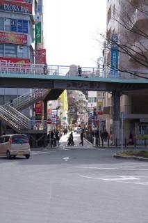 江島道:ファミリー通り