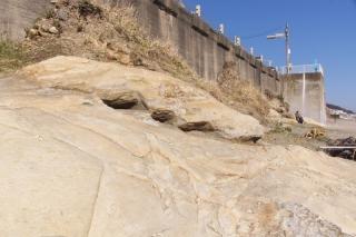 江島道:七里ヶ浜の防波堤の下にかつての崖が覗く