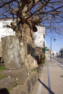 江島道:盛久碑前の庚申塚碑と江島道