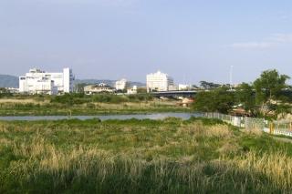 旧東海道:現在の酒匂川の渡し付近の様子