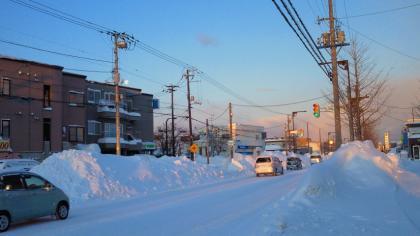猛吹雪の翌朝