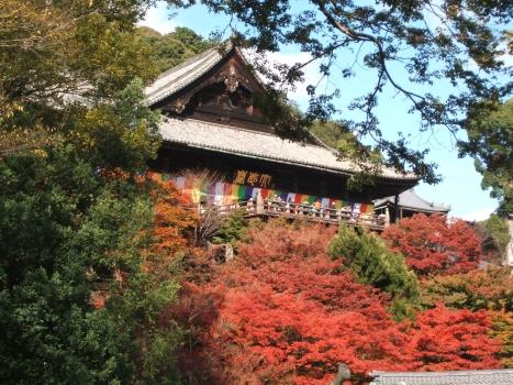 長谷寺の観音堂(秋)